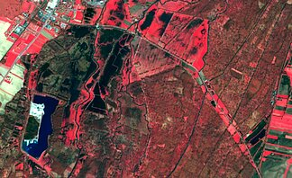 Sentinel-2A optical image of an area near Selestat (Alsace, France) with wetlands. (Credits Sertit/Icube)